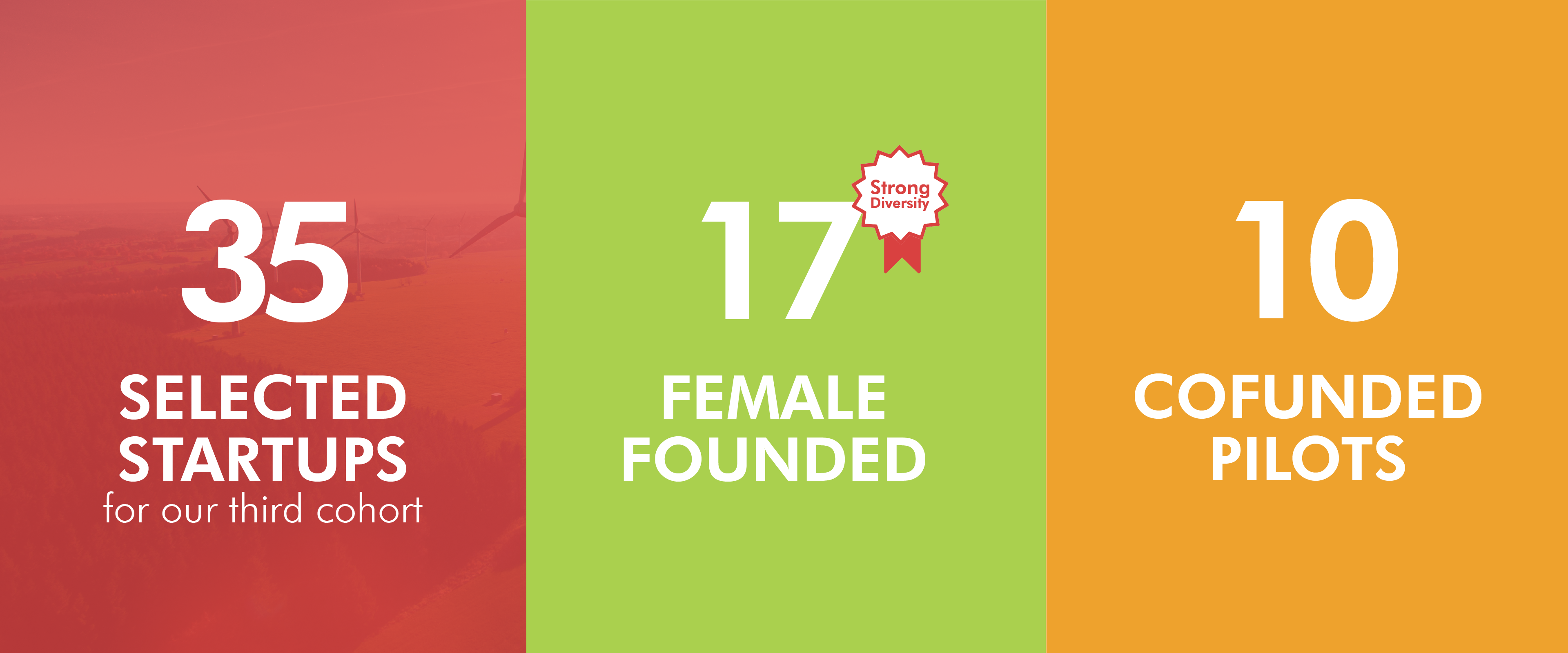 Female founders and joint pilots